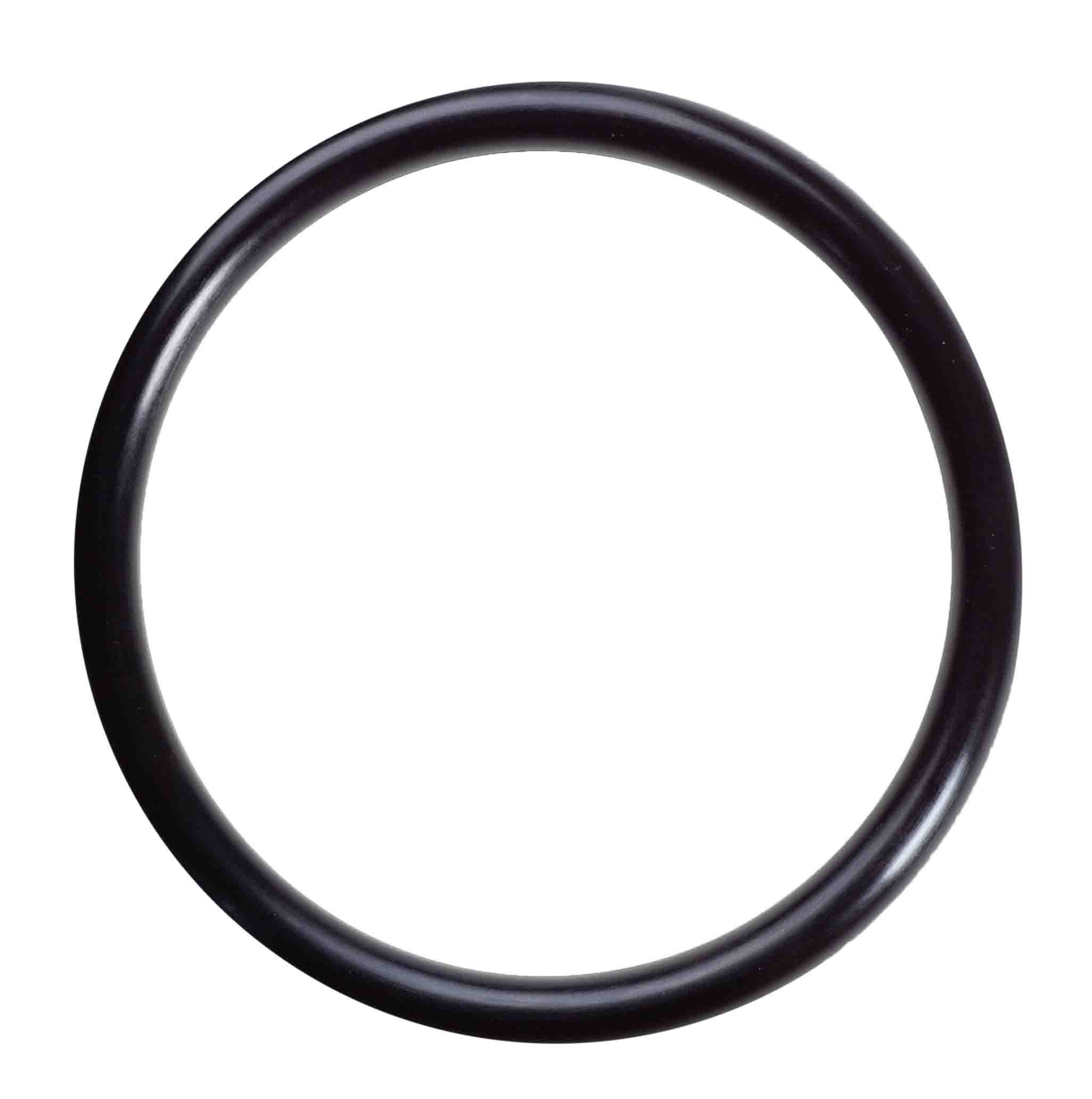 06808 Housing O-rings for Nanopure II system-  DISCONTINUED